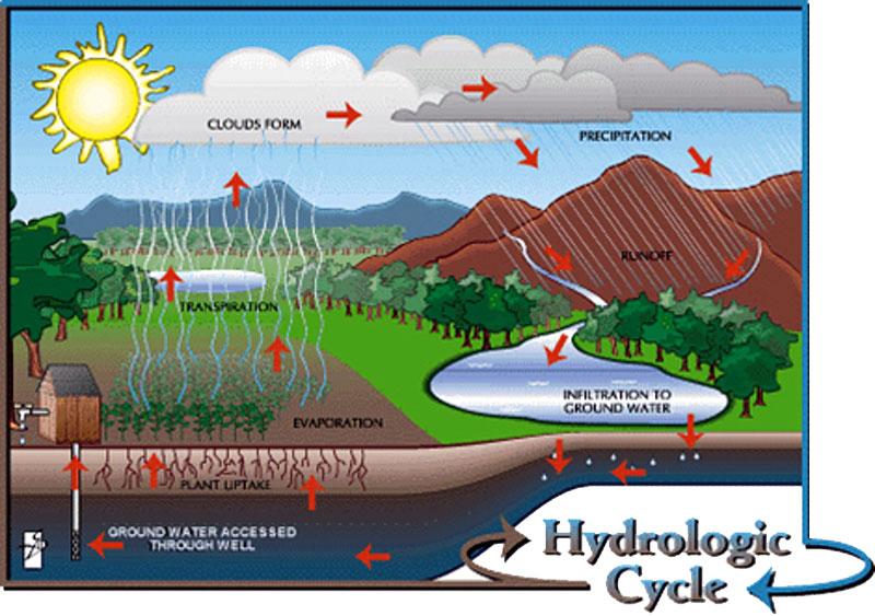 ทดสอบความซึมน้ำของดิน Soil Permeability Test